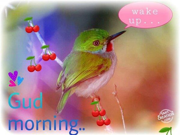 Gud morning..wake up...