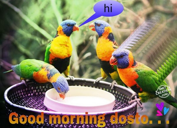 Good morning Dosto...