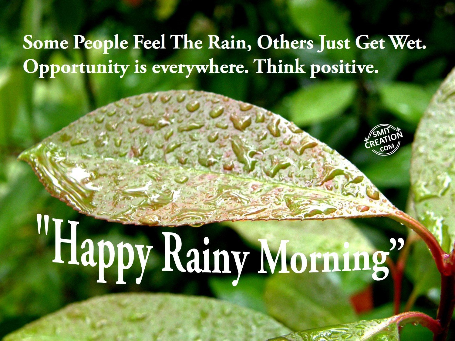 Happy rainy morning smitcreation some people feel the rain others just get wet opportunity is everywhere think positive happy rainy morning m4hsunfo