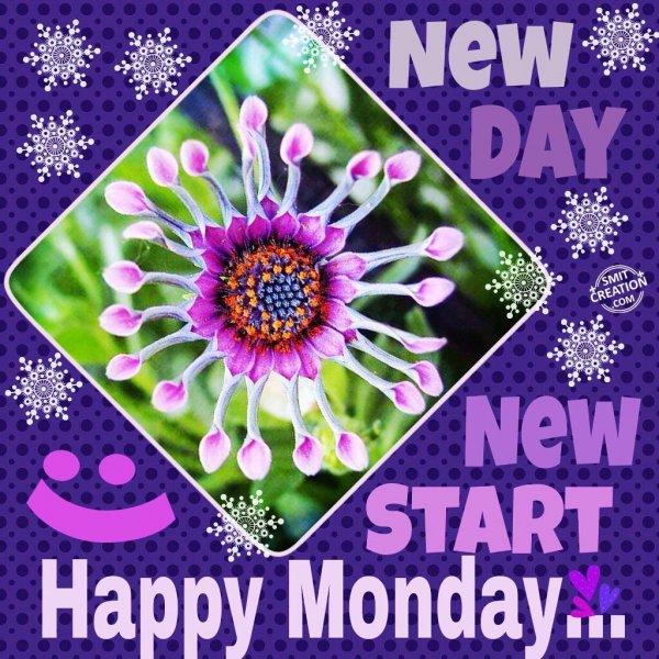 Happy Monday…