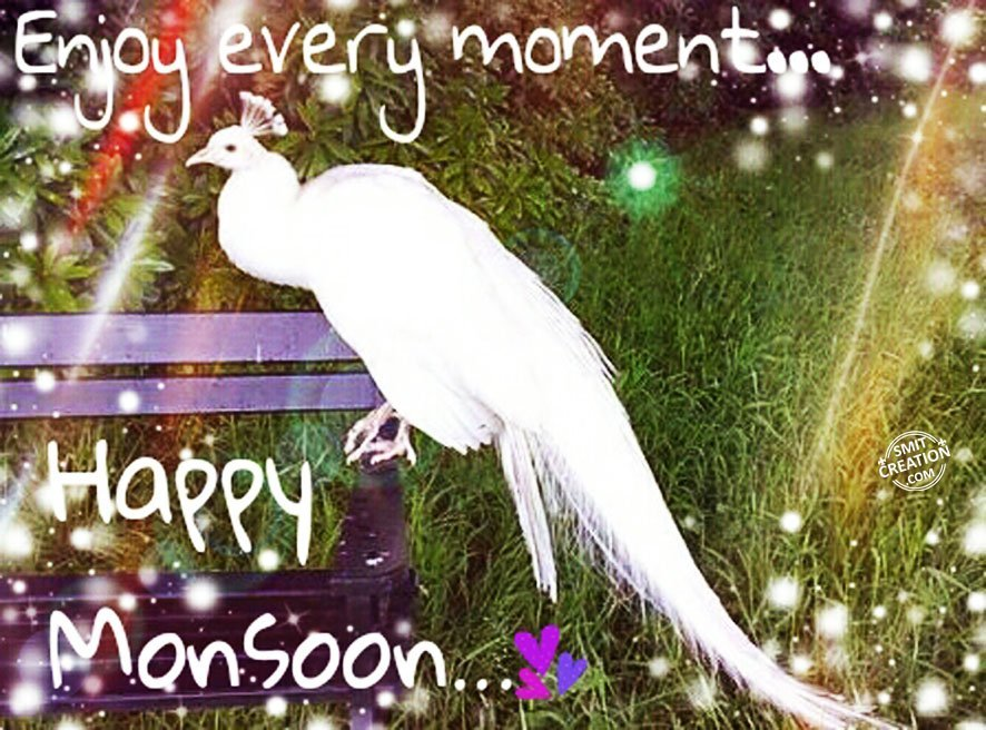 Monsoon Pictures And Graphics Smitcreationcom Page 3