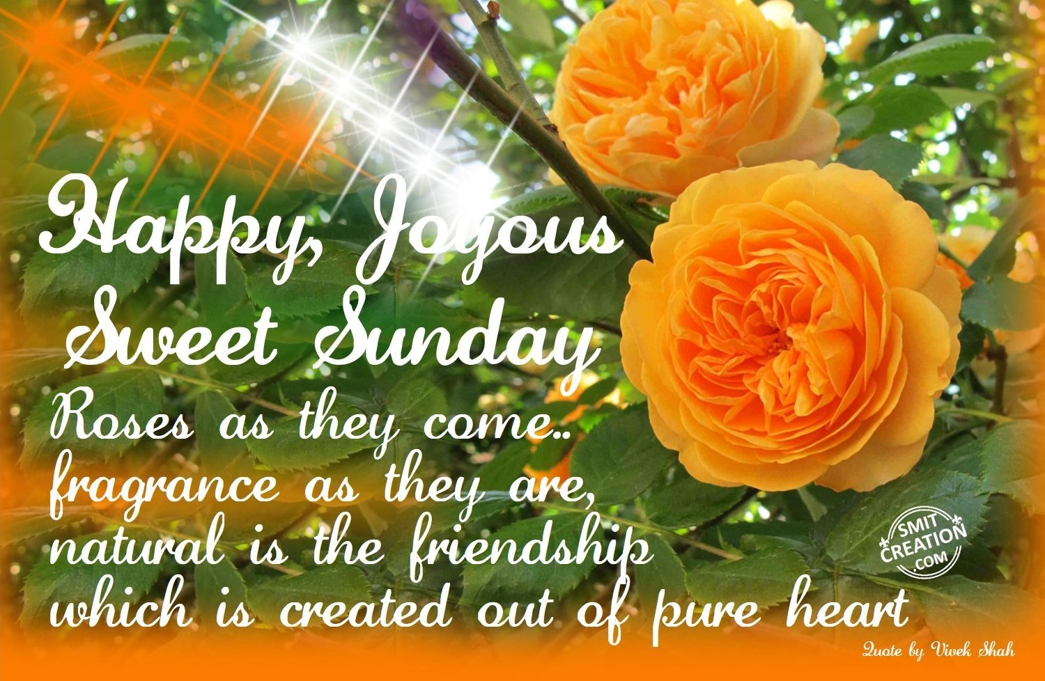 Happy Joyous Sweet Sunday - SmitCreation.com