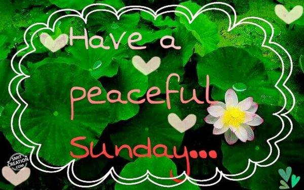 Have A Peaceful Sunday...
