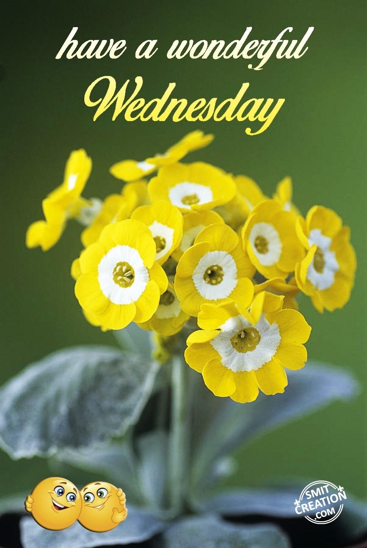 Have A Wonderful Wednesday Smitcreationcom