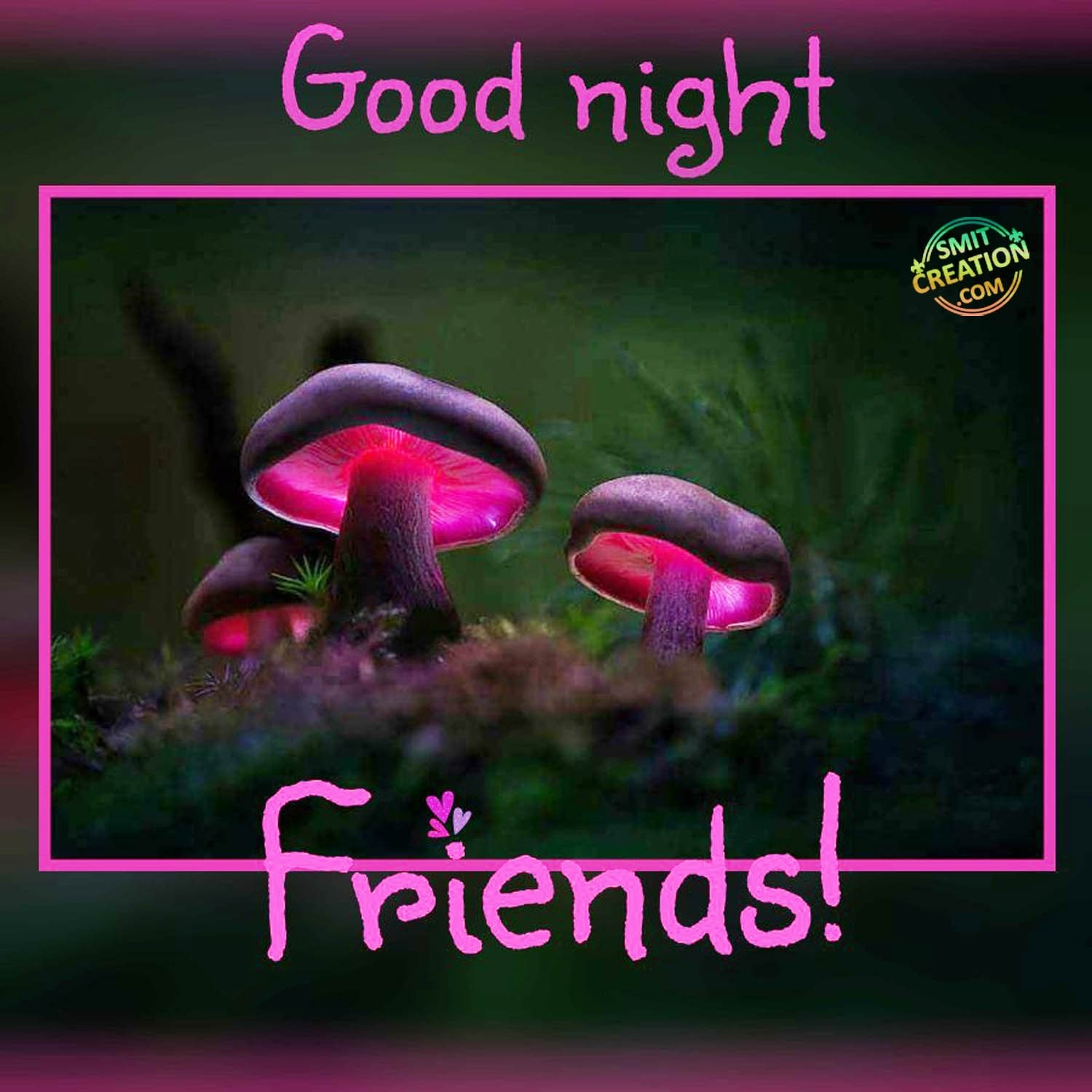Good Night Friends Pictures And Graphics Smitcreationcom Page 7
