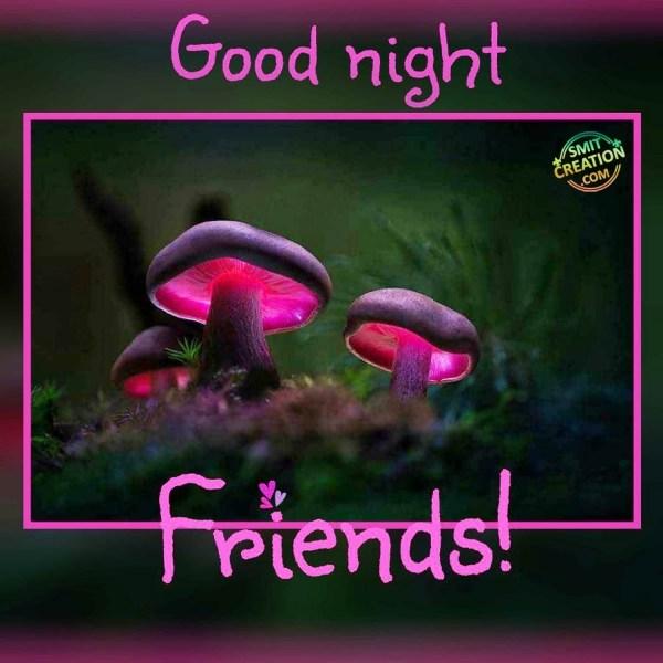 GOOD NIGHT FRIENDS !