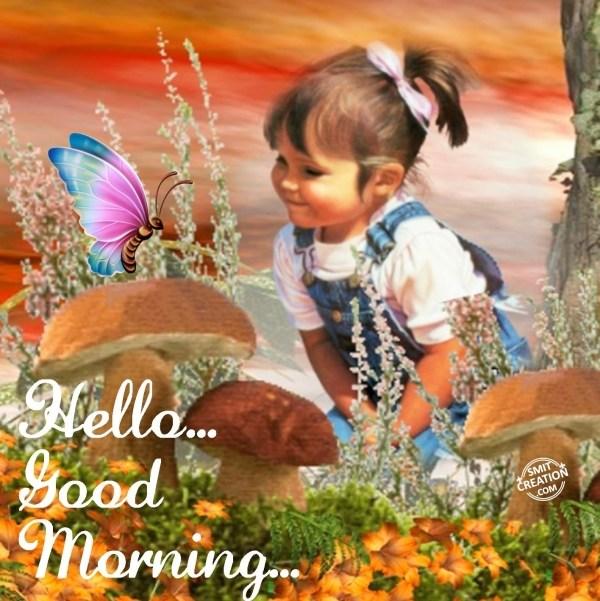 Hello... Good Morning...