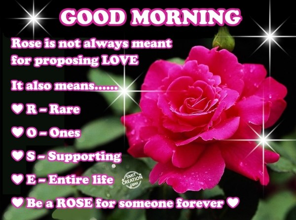 Good Morning Wishes Rose