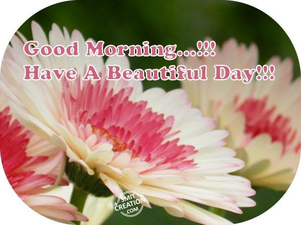 Good Morning…!!!
