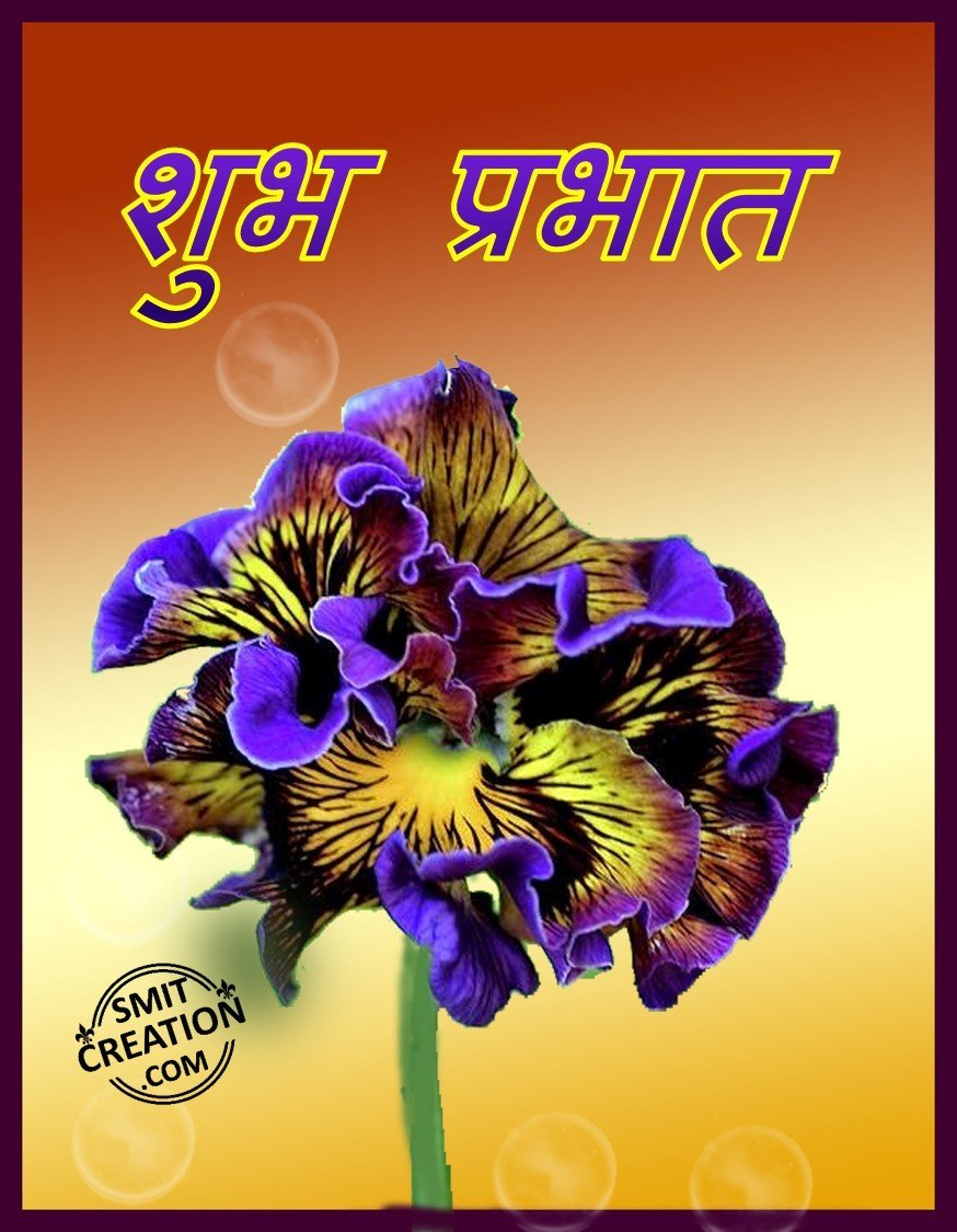 Navratri Messages, Happy Navratri Wishes / Messages in English