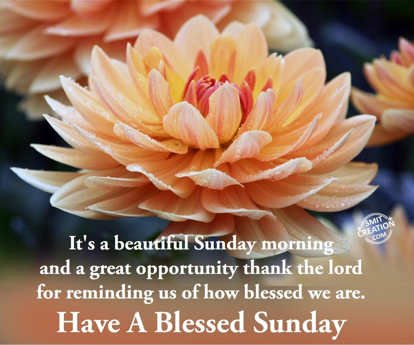 Have A Blessed Sunday Smitcreationcom