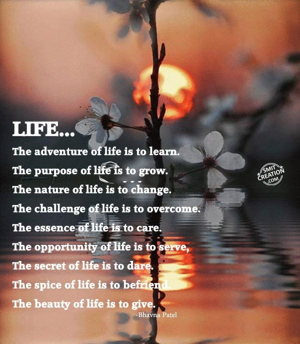 LIFE….