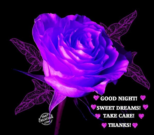 GOOD NIGHT! SWEET DREAMS! TAKE CARE! THANKS!