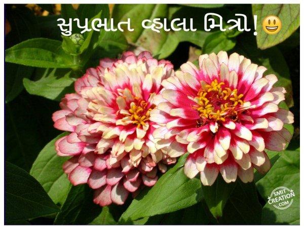 Shubh Savar Flower Image