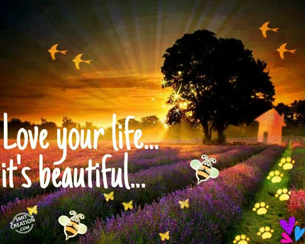 Love your life…it's beautiful…