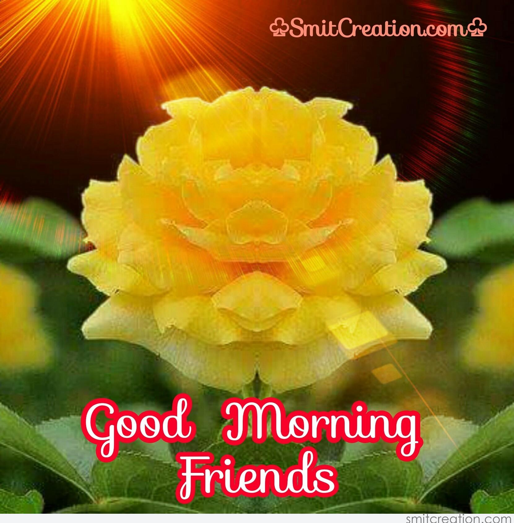 Good morning images with yellow roses - Good morning rose image ...