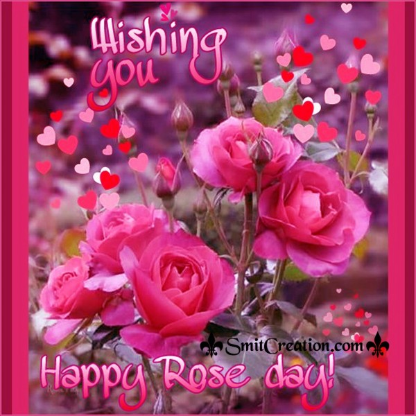 Wishing You Happy Rose Day