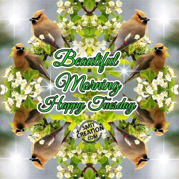 Beautiful Morning Happy Tuesday