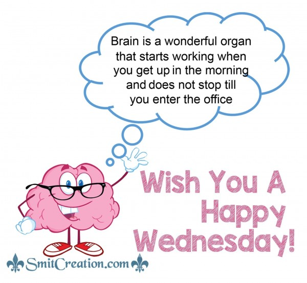 Wish You A Happy Wednesday!