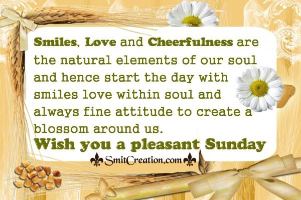 Wish you a pleasant Sunday