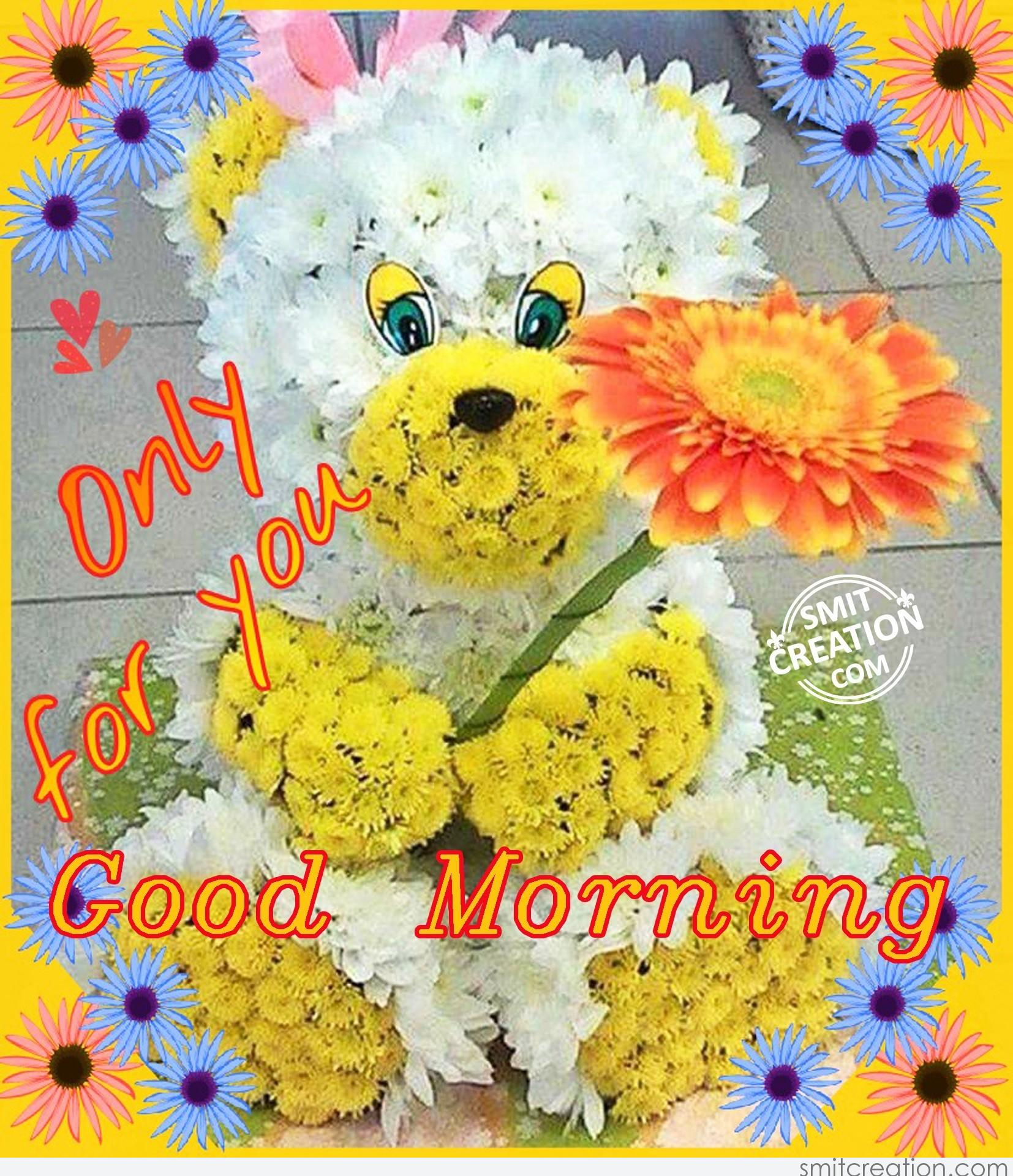 Only For You Good Morning Smitcreationcom
