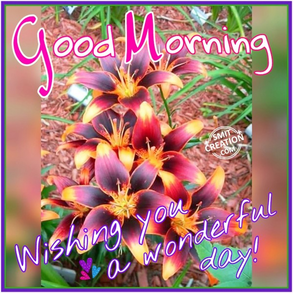 Good Morning – Wishing You A Wonderful Day