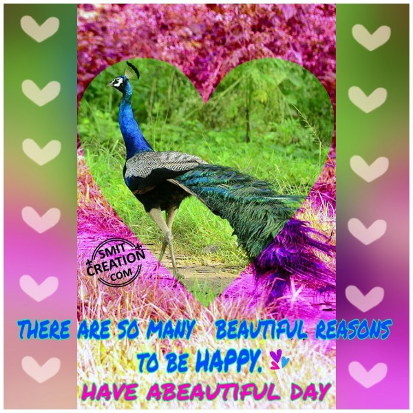 Have A Beautiul Day