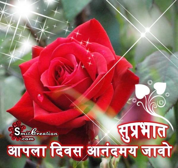 Shubh Sakal Flower Images ( शुभ सकाळ फुलांचे इमेजेस )