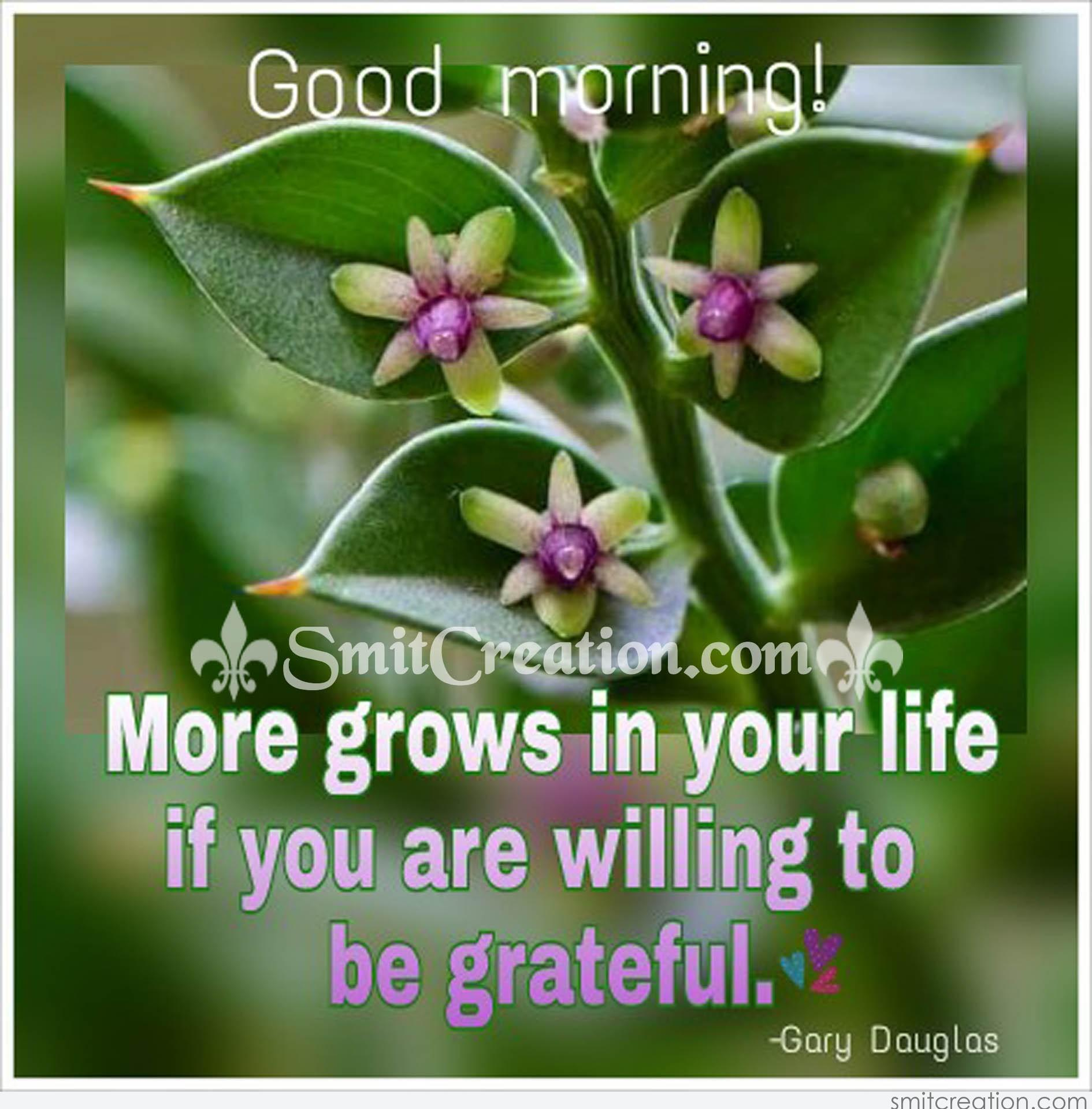 Good Morning More Grows In Your Life Smitcreationcom