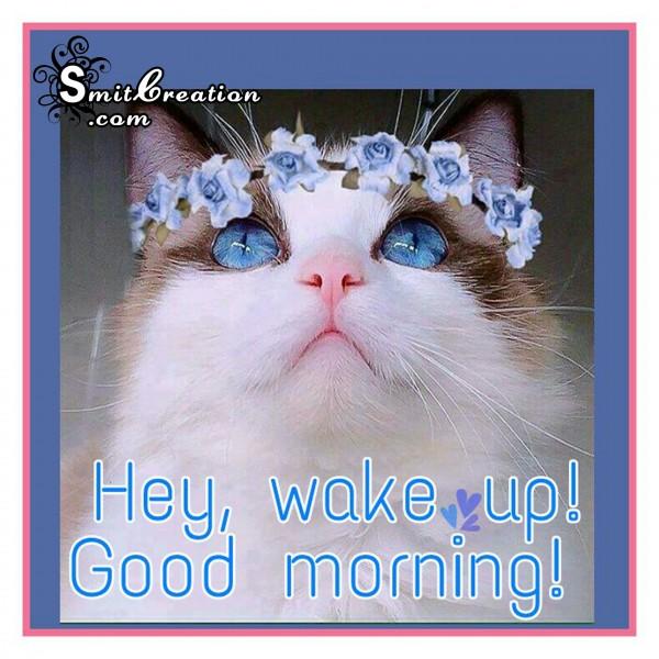 Hey, Wake Up! Good Morning !