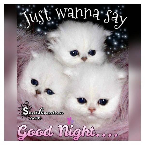Just Wanna Say Good Night