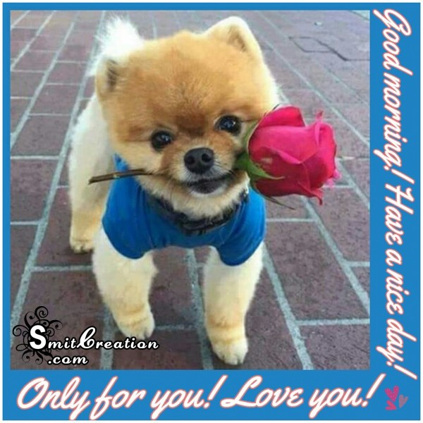 Good Morning – Have a nice day – Only for you – Love you