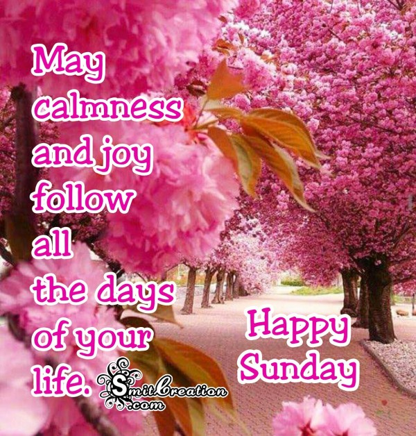 Happy Sunday – May calmness and joy follow all the days of your life.