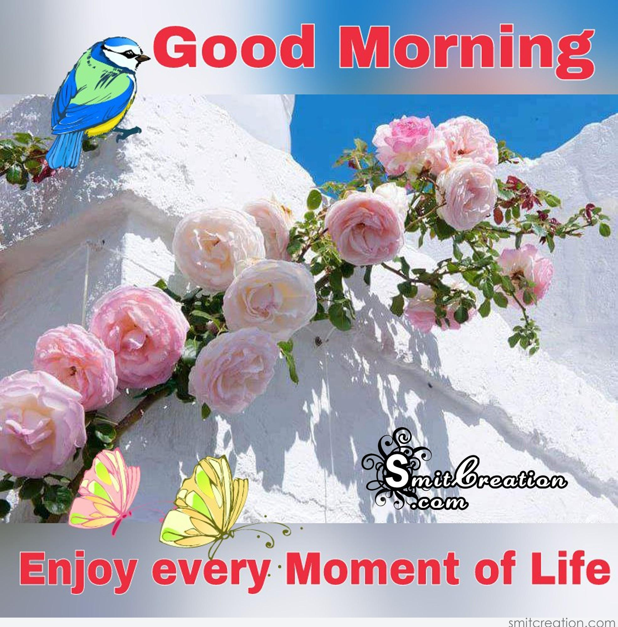 Good Morning Life Pictures And Graphics Smitcreationcom Page 6