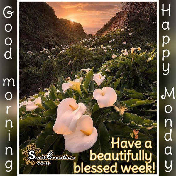 Good Morning – Happy Monday – Have A Beautiful Blessed Week