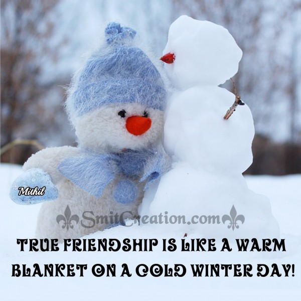 TRUE FRIENDSHIP IS LIKE A WARM BLANKET