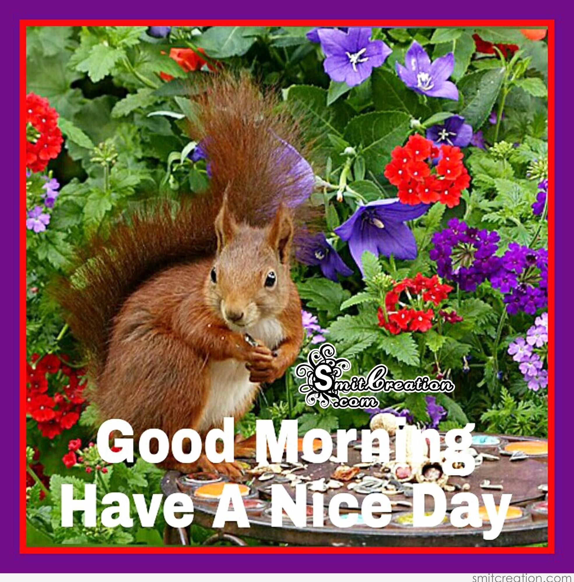 Good Morning Animals Pictures And Graphics