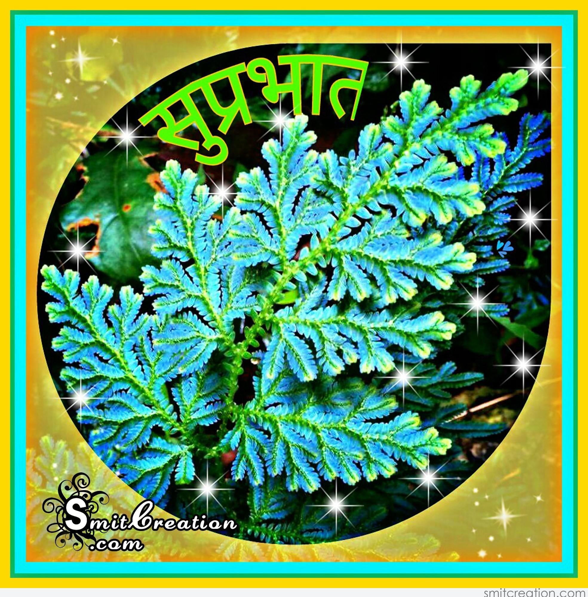 Suprabhat best image in hindi - sdqpt.xdrol.kim