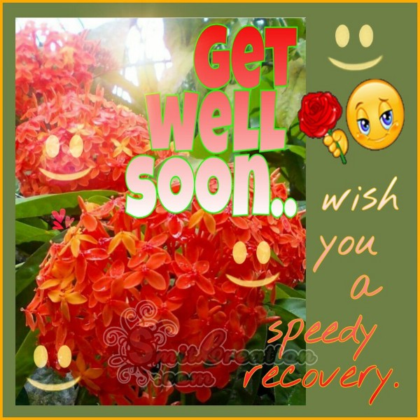 Get Well Soon – Wish you a speedy recovery