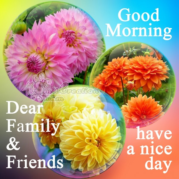 Good Morning Dear Family & Friends Have A Nice Day