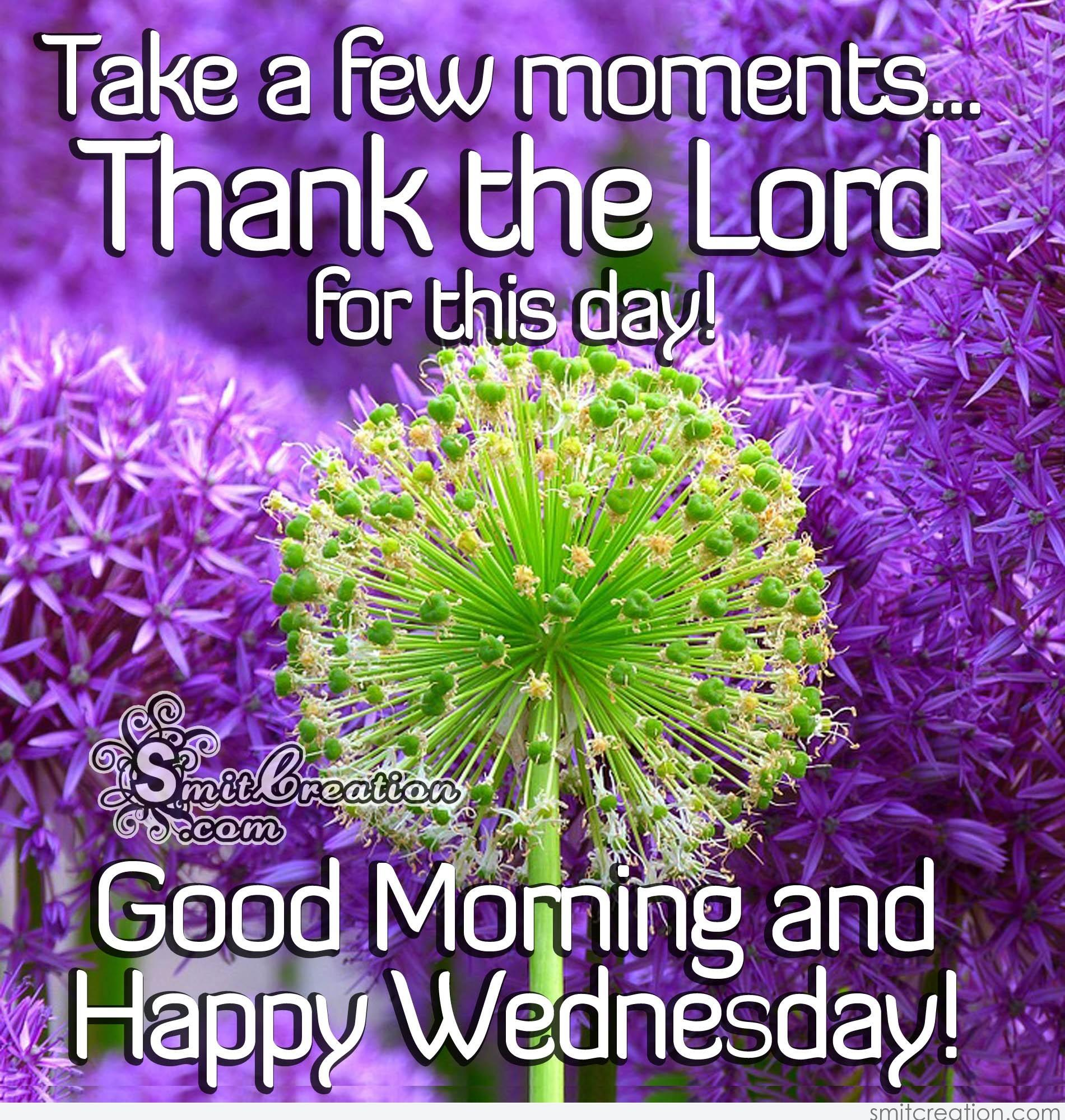 good morning and happy wednesday   smitcreation