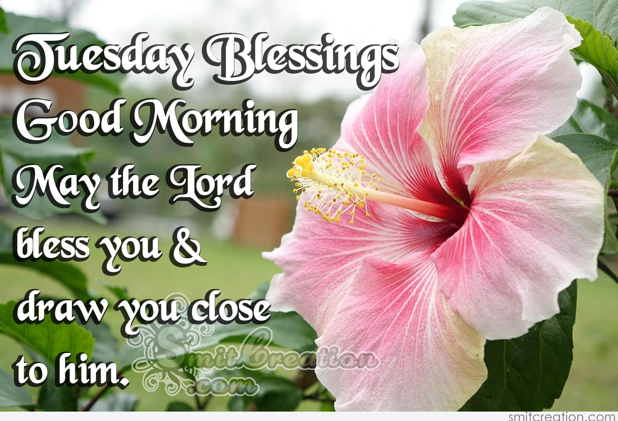 Good Morning Tuesday Blessing Images : Tuesday blessings good morning smitcreation