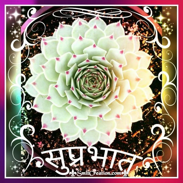 Suprabhat Hindi Images ( सुप्रभात हिंदी इमेजेस )
