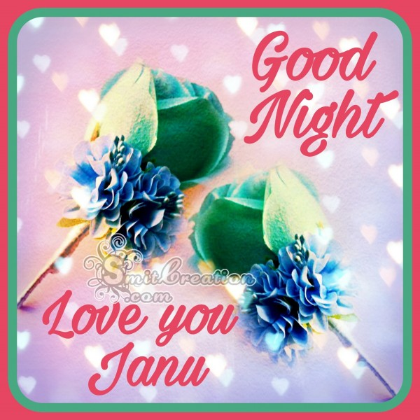 Good Night Love You Janu