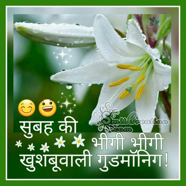 Subah Ki Bhigi Bhigi Khushbuwali Good Morning
