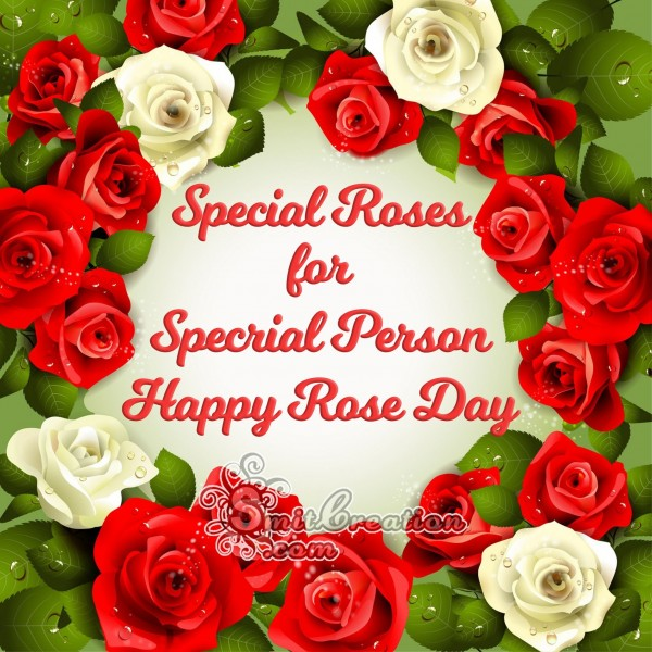 Special Roses for Special Person Happy Rose Day