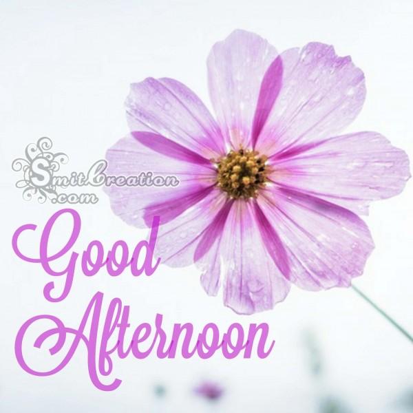 Good Afternoon Flower