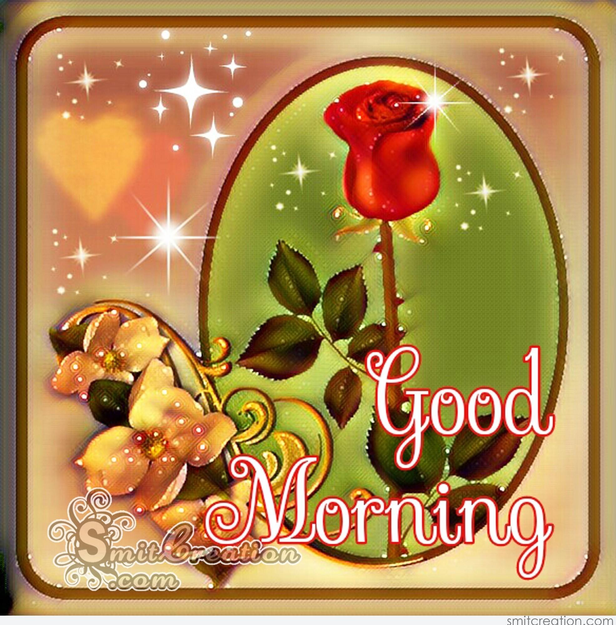 Good Morning Roses Download : Good morning rose flower smitcreation