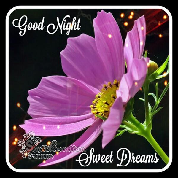 Good Night Flower