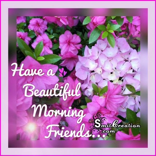Have a Beatiful Morning Friends